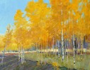 Aspen Morning ( Call for availabilty )