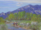 SOLD  Taos Spring Afternoon
